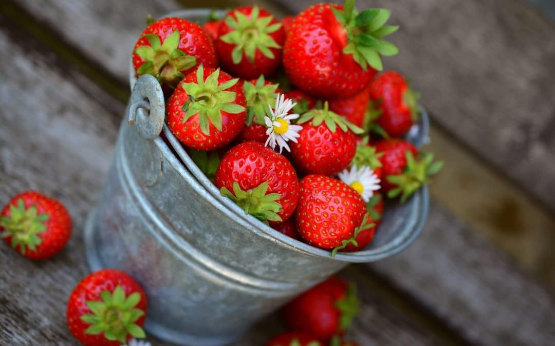 EINFACH Erdbeeren